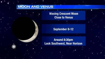 Look for Venus near the moon this week