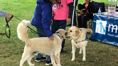 Miami Valley Pet Therapy Association hosting 'PetFest' today