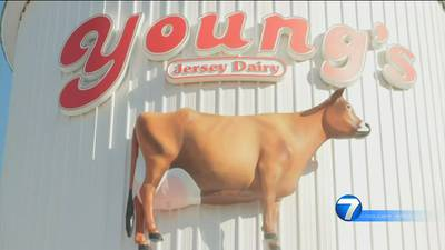 DeWine visits Young's Jersey Dairy grand opening